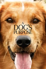 A Dog's Purpose | Watch Movies Online