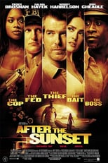 After the Sunset | Watch Movies Online