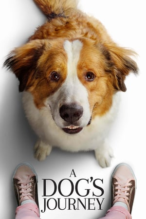 A Dog's Journey | Watch Movies Online
